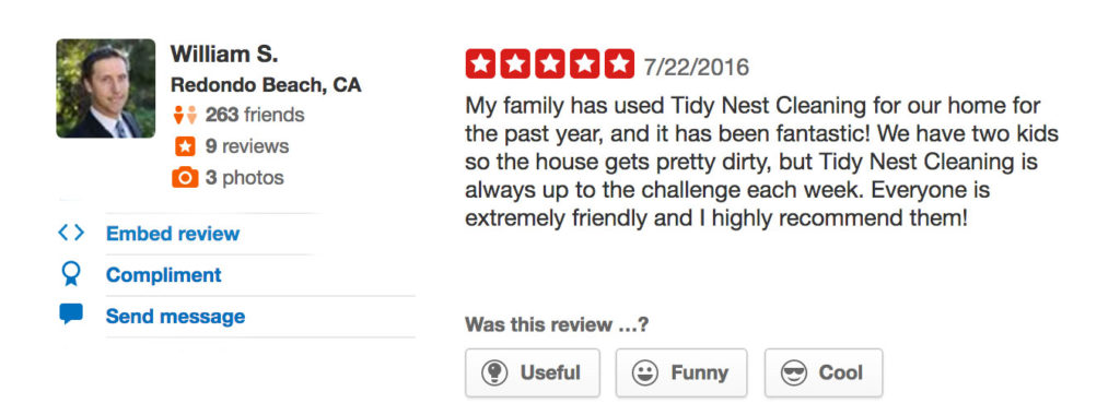 Tidy Nest Cleaning Review